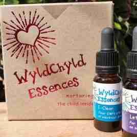 WyldChyld Essences Boxed Set