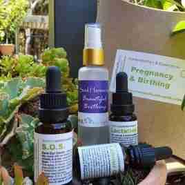 Pregnancy & Birthing Pack
